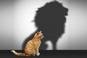 مفهوم الثقة بالنفس