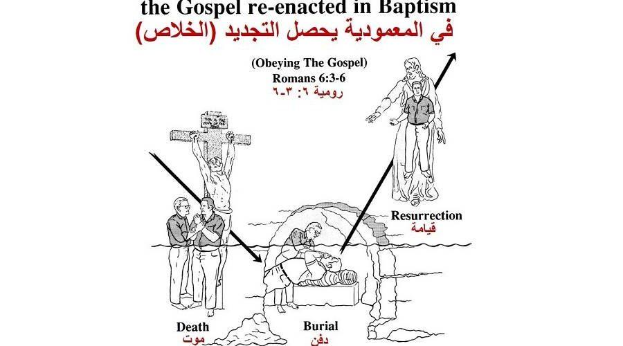 ماذا يعلم الكتاب المقدس عن المعمودية؟